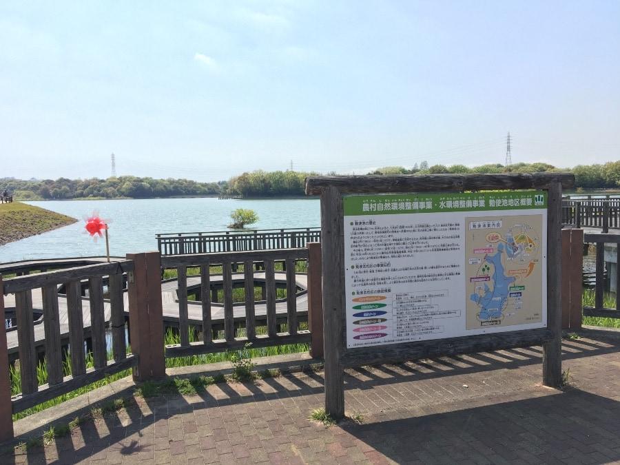 緑区と豊明市の境にある勅使池水辺公園
